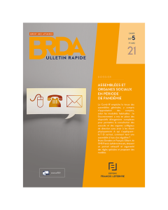 Bulletin Rapide Droit des Affaires - Numéro Spécial
