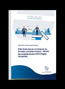 LIVRE BLANC - États financiers et contrôles de vos annexes (comptes sociaux) - Modèle de comptes sociaux 2020 (Règles françaises)